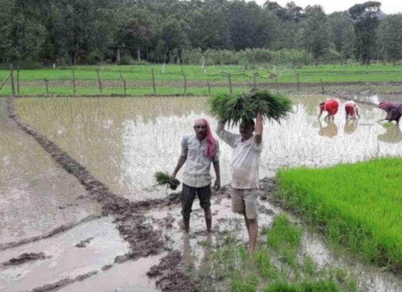 अजब बिहार के गजब नेताजी, बिना जमीन खुद को बता रहे किसान, है करोड़ों की संपत्ति