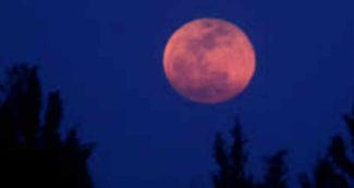 21 अप्रैल, मंगलवार का राशिफल : चार राशियों में चंद्रयोग, मन रहेगा चंचल और अशांत