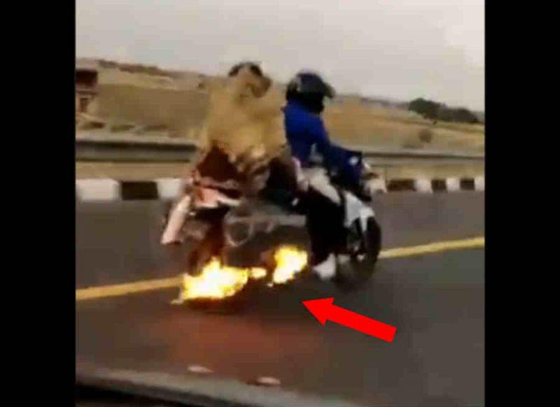 Video: जलती बाइक पर सवार था परिवार, रफ्तार थी तेज, 4 किमी. तक नहीं लगी भनक, फिर पुलिस की एंट्री