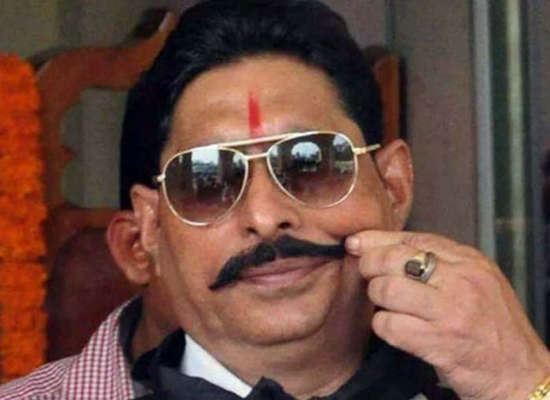 लाखों के तो हाथी-घोड़े हैं अनंत सिंह के पास, इतनी संपत्ति के मालिक हैं छोटे सरकार!
