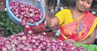 एक ही दिन में 50₹/किलो तक बढ़ गए प्याज के दाम ! सस्ता करने के लिए सरकार ने उठाया ये बड़ा कदम