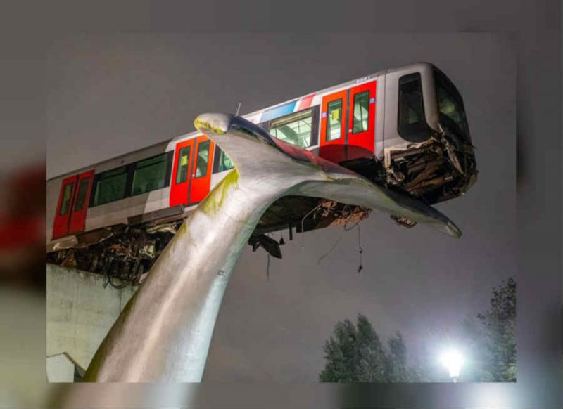 स्टेशन तोड़कर मेट्रो निकलने वाली थी बाहर, मछली की 'पूंछ' से रुक गया बड़ा Accident
