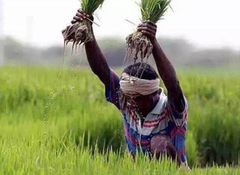 Budget 2021- आंदोलन के बीच किसानों के लिये ये दो बड़े ऐलान कर सकती है वित्त मंत्री!