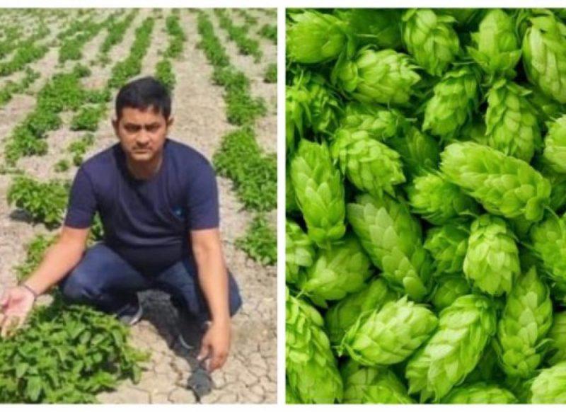 बिहार के किसान ने उगाई दुनिया की सबसे महंगी सब्जी, 1 किलो का दाम 1 लाख रुपये!