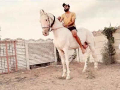 IPL से छुट्टी मिलते ही नये काम में जुटे रविन्द्र जडेजा, तस्वीर पोस्ट कर कही बड़ी बात