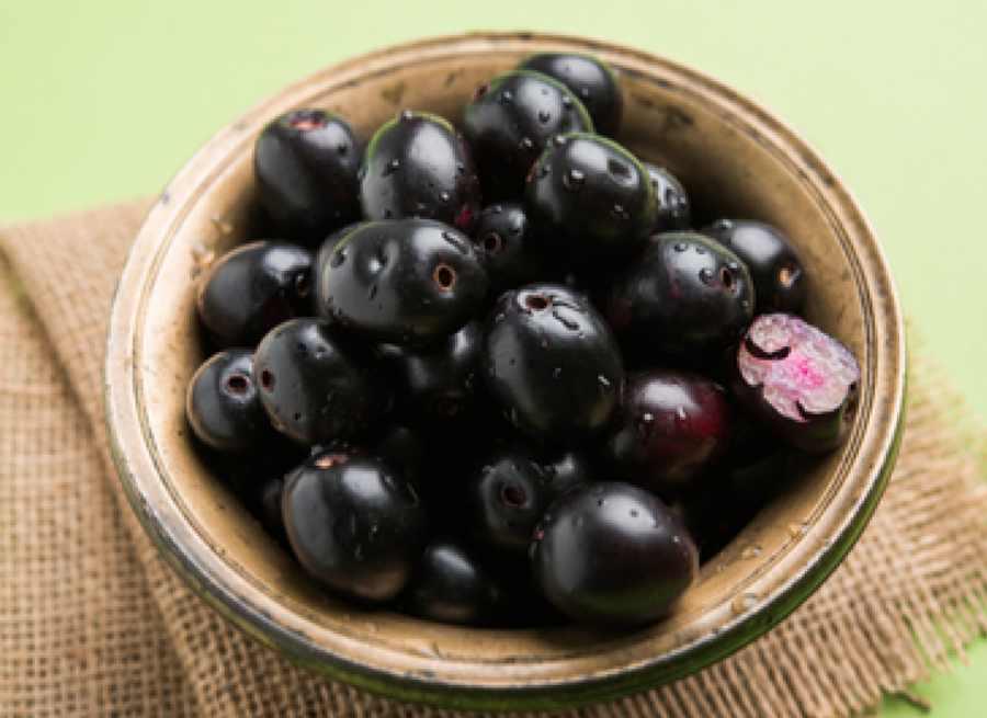 Jamun Heath Benefits जामुन खाने के फायदे (1)