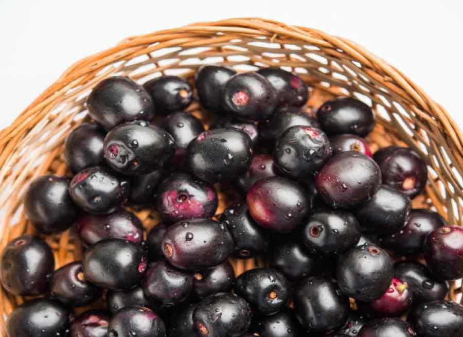 Jamun Heath Benefits जामुन खाने के फायदे (2)